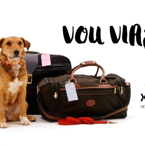 Vou viajar: o cachorro vai ou fica?