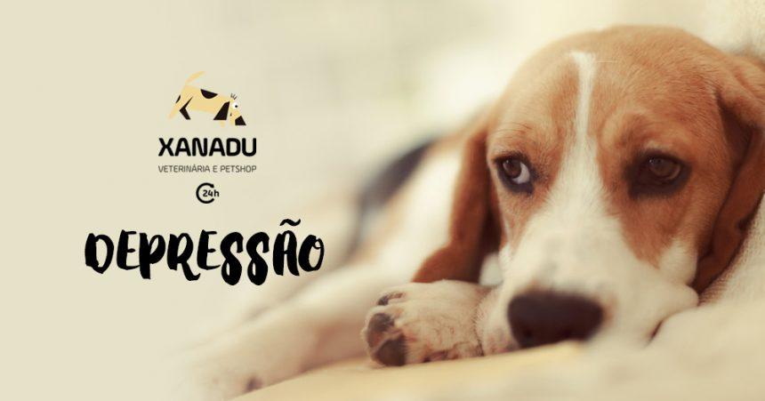 Cachorro tem depressão?
