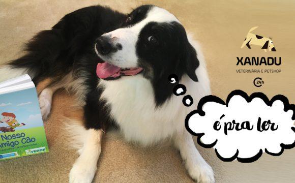 """Manual """"Nosso amigo cão"""" – o guia do dono responsável. Como cuidar bem do seu cachorro!"""